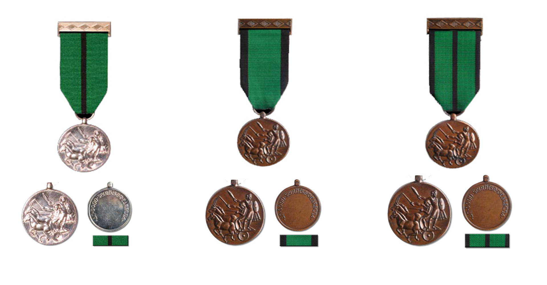 The Distinguished Service Medal (DSM)
